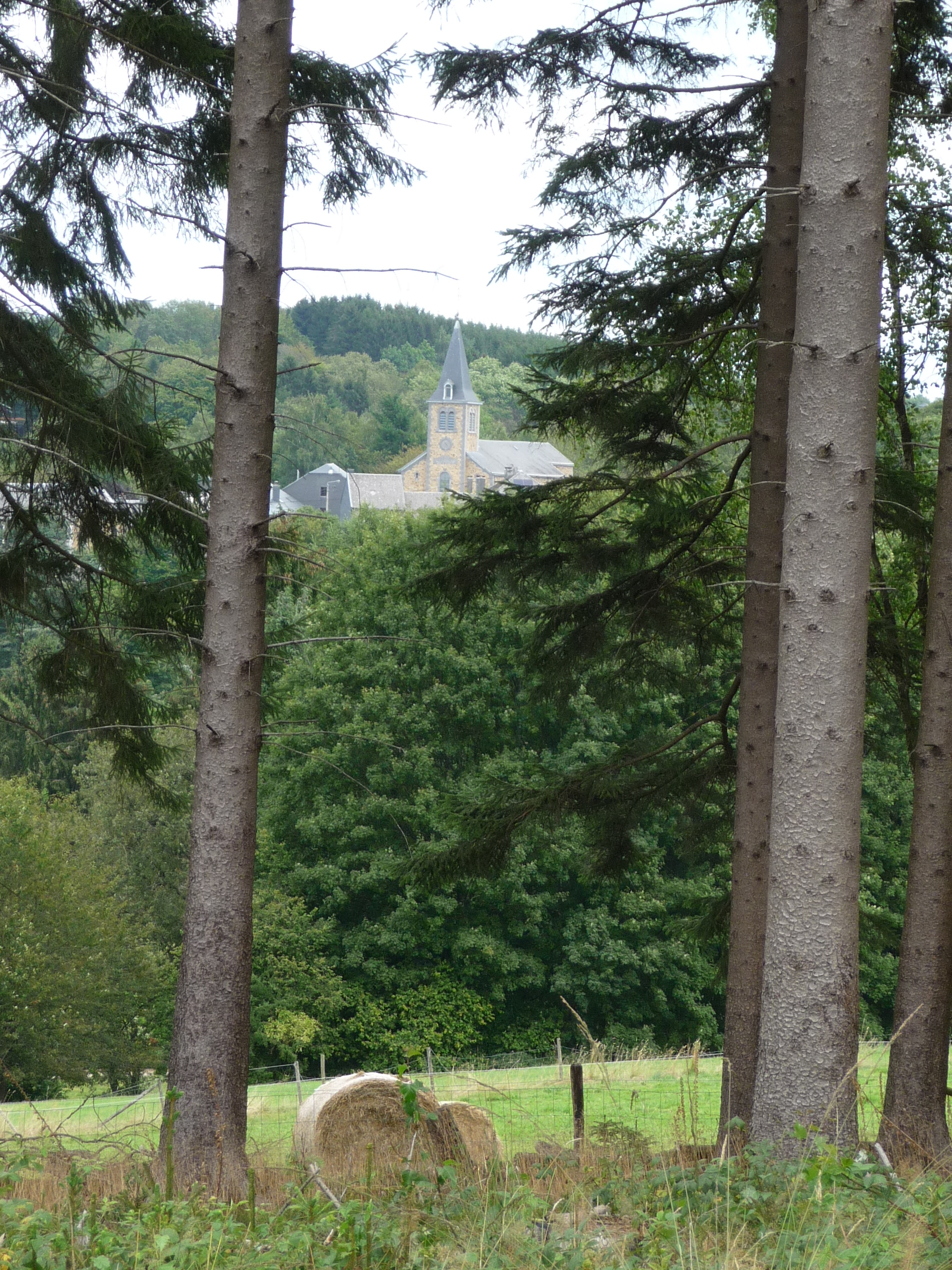 Ardennes village glimpsed through the trees