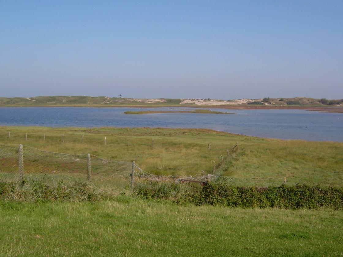 Het Zwin nature reserve