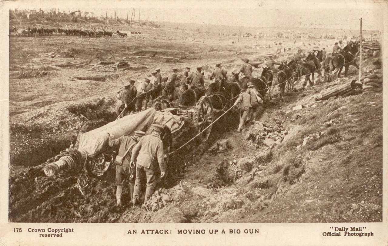 horses in the first world war