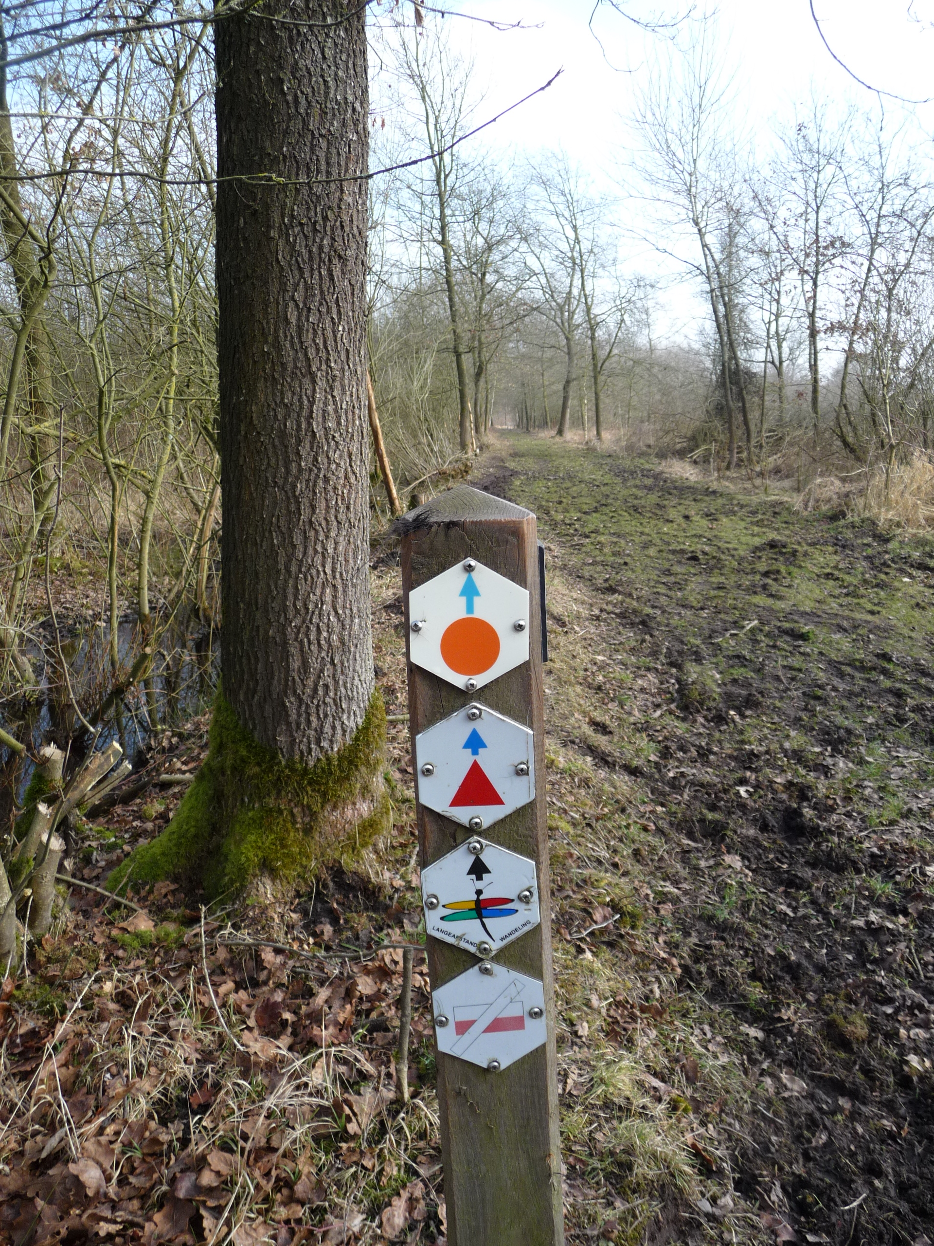 Walks are colour coded and well signposted.