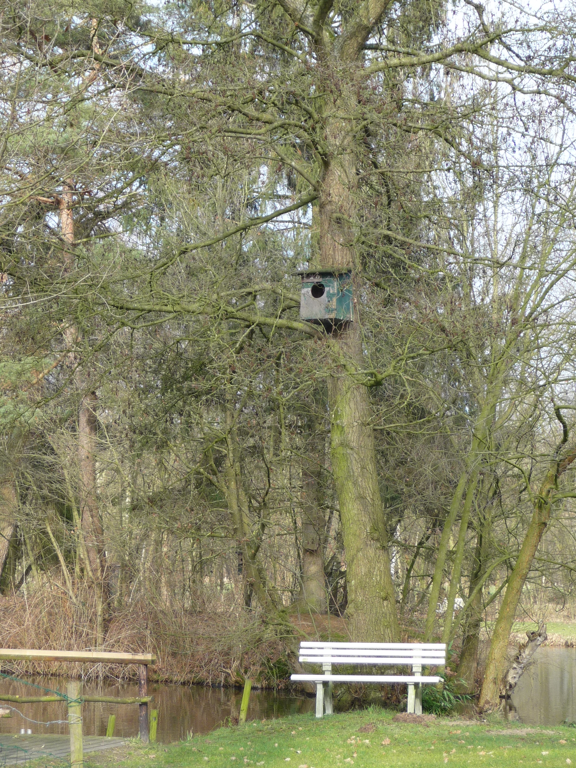The other half they used to build giant birdboxes