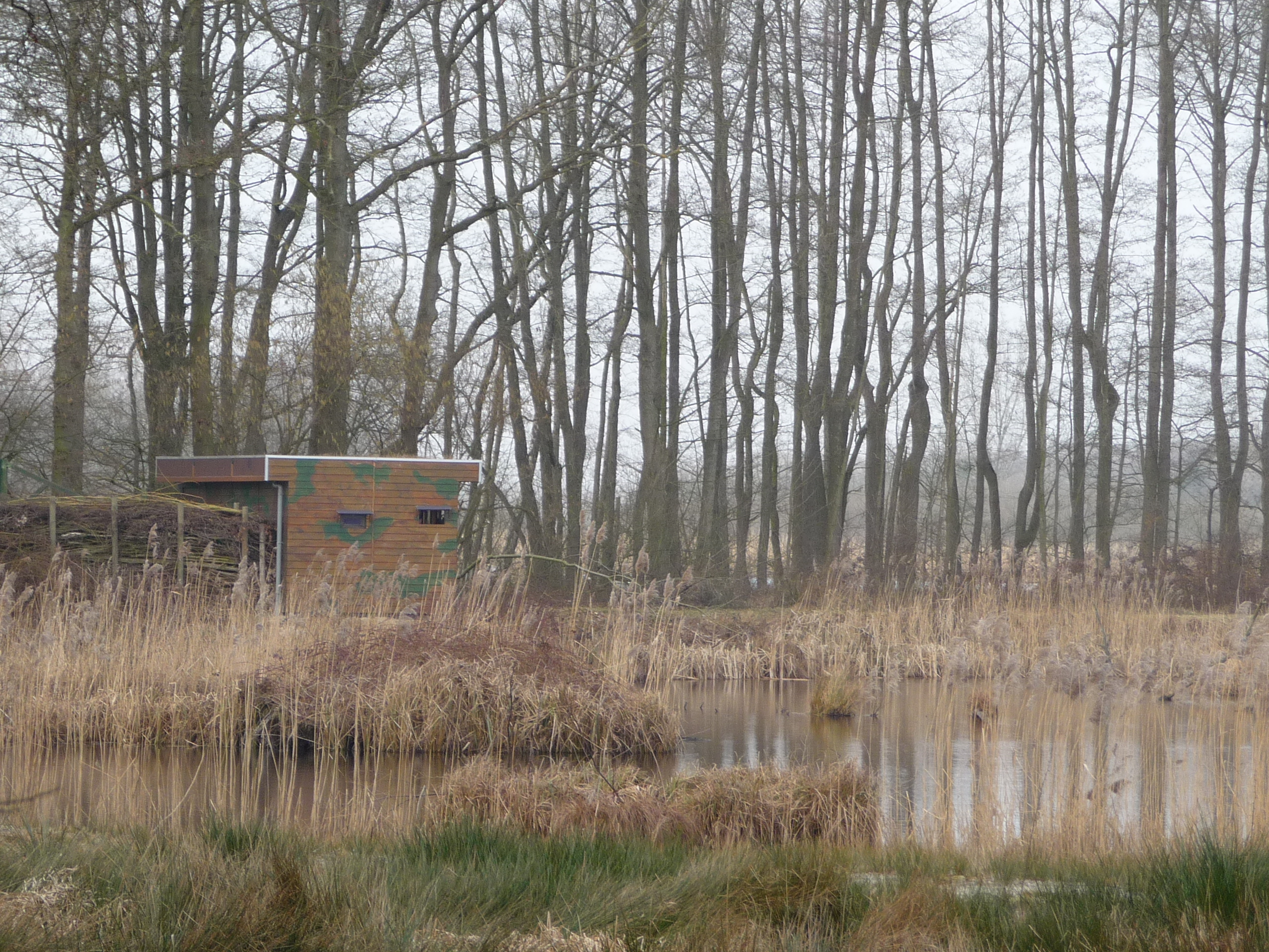 There are three bird hides open to the public; children might like the opportunity to see birds from close up