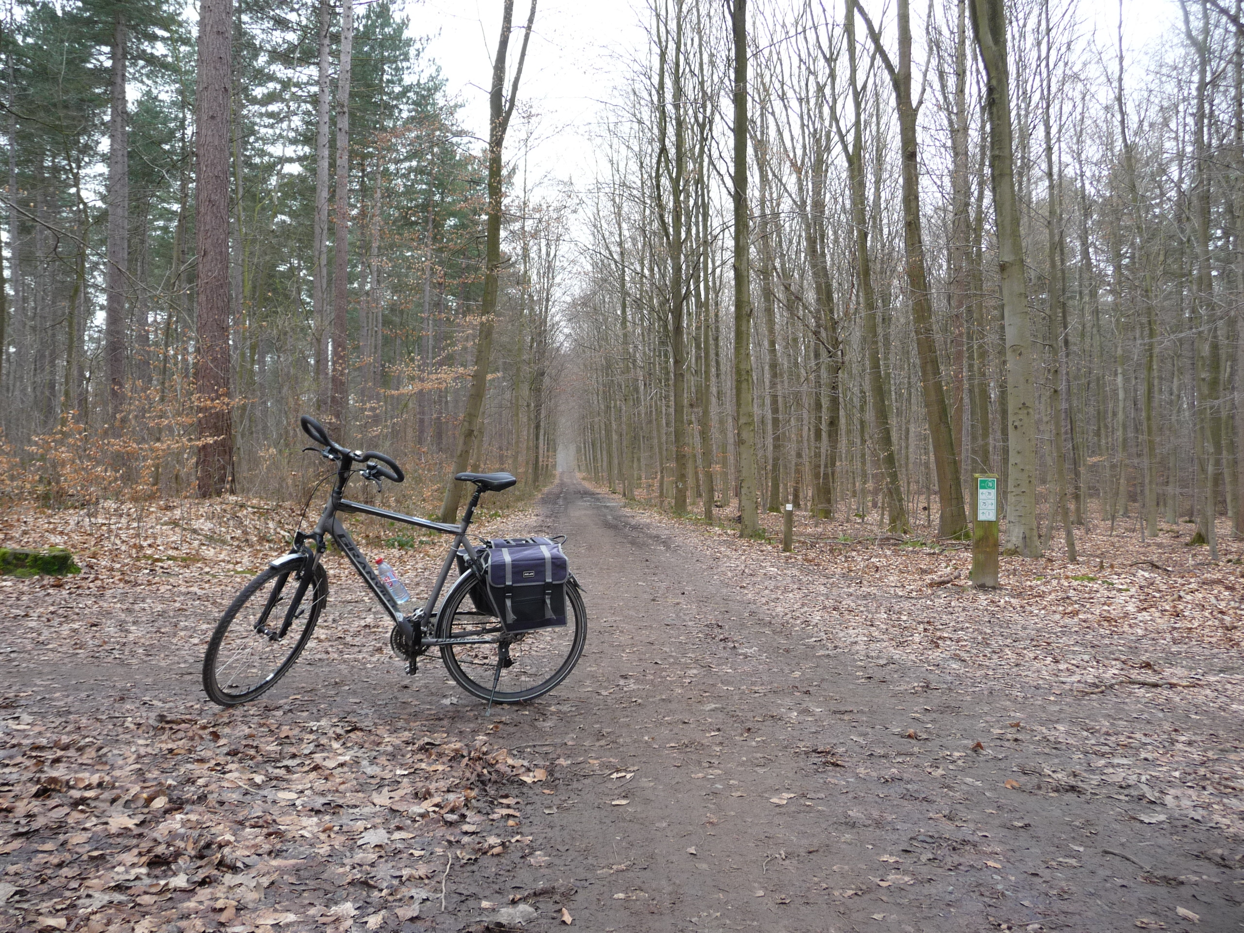 Cycling through Vaalbeek