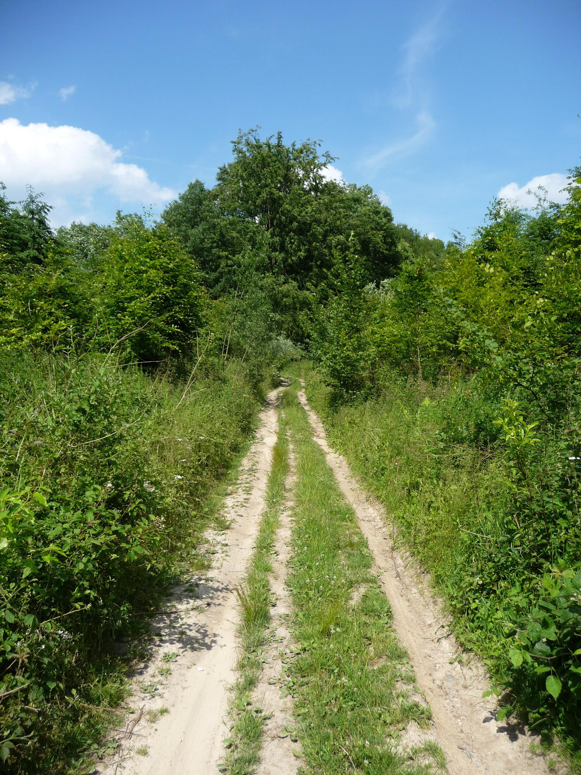 Walking in Archennes