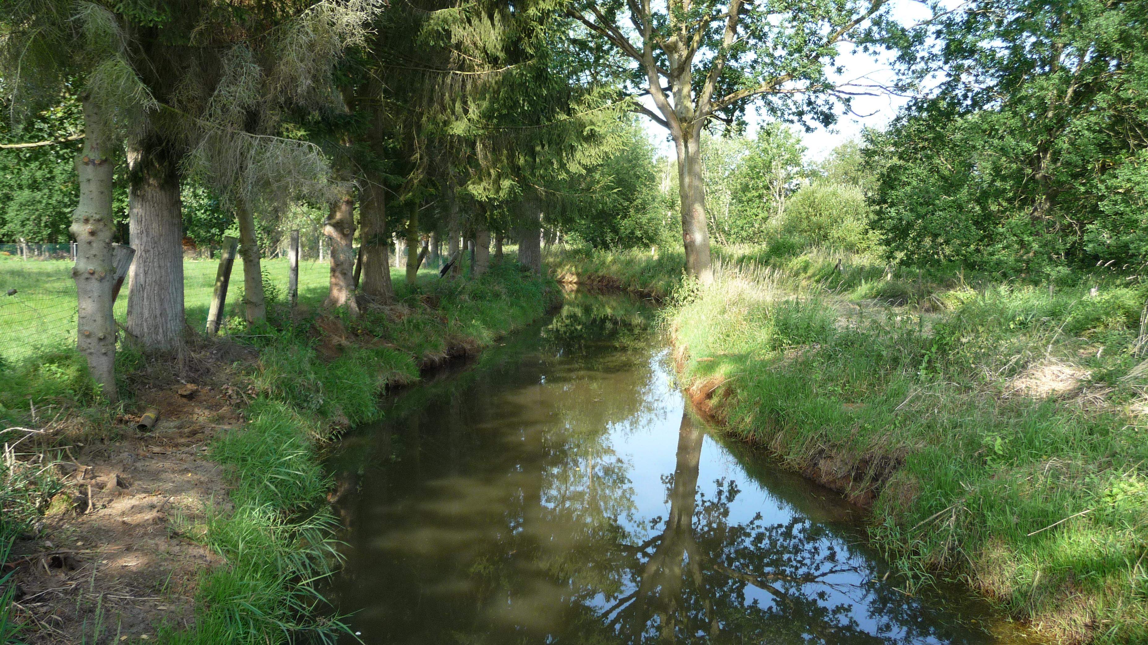 River near Diest