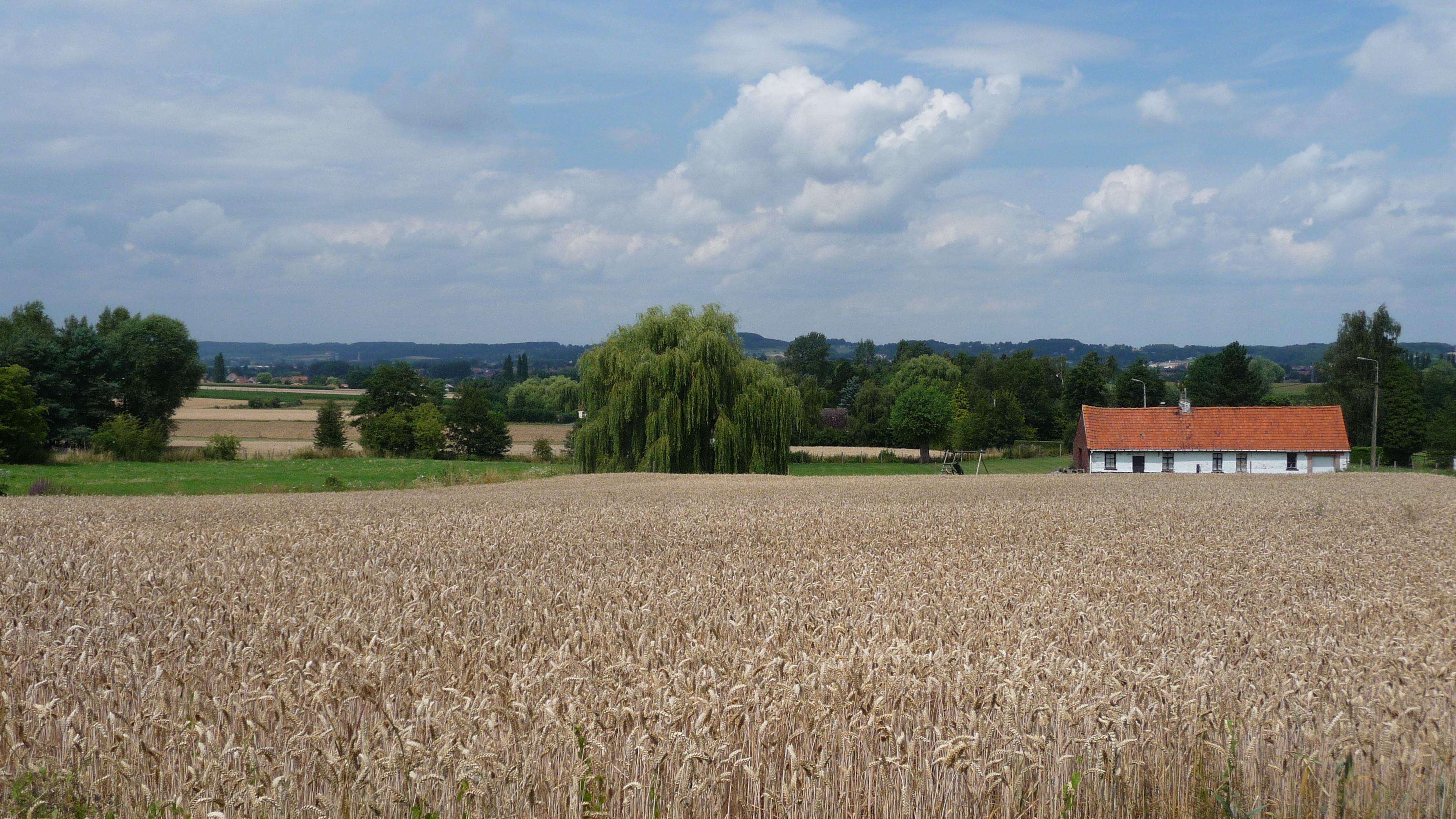 Walking around Frasnes-les-Anvaing