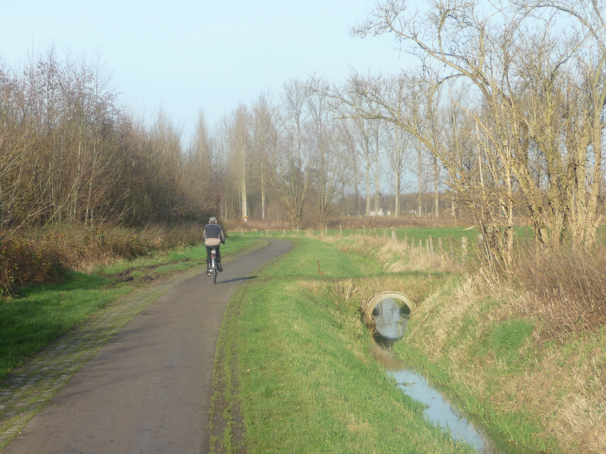 Cyclist in December