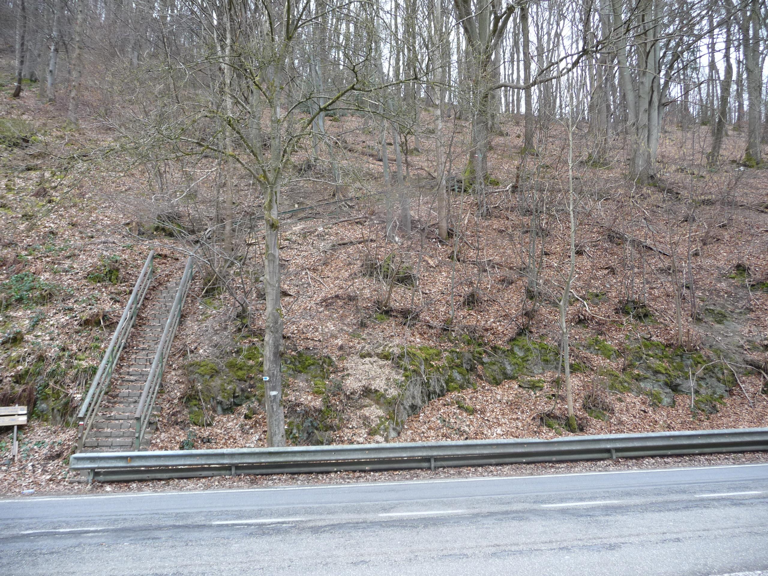 GR571-Coo-steps