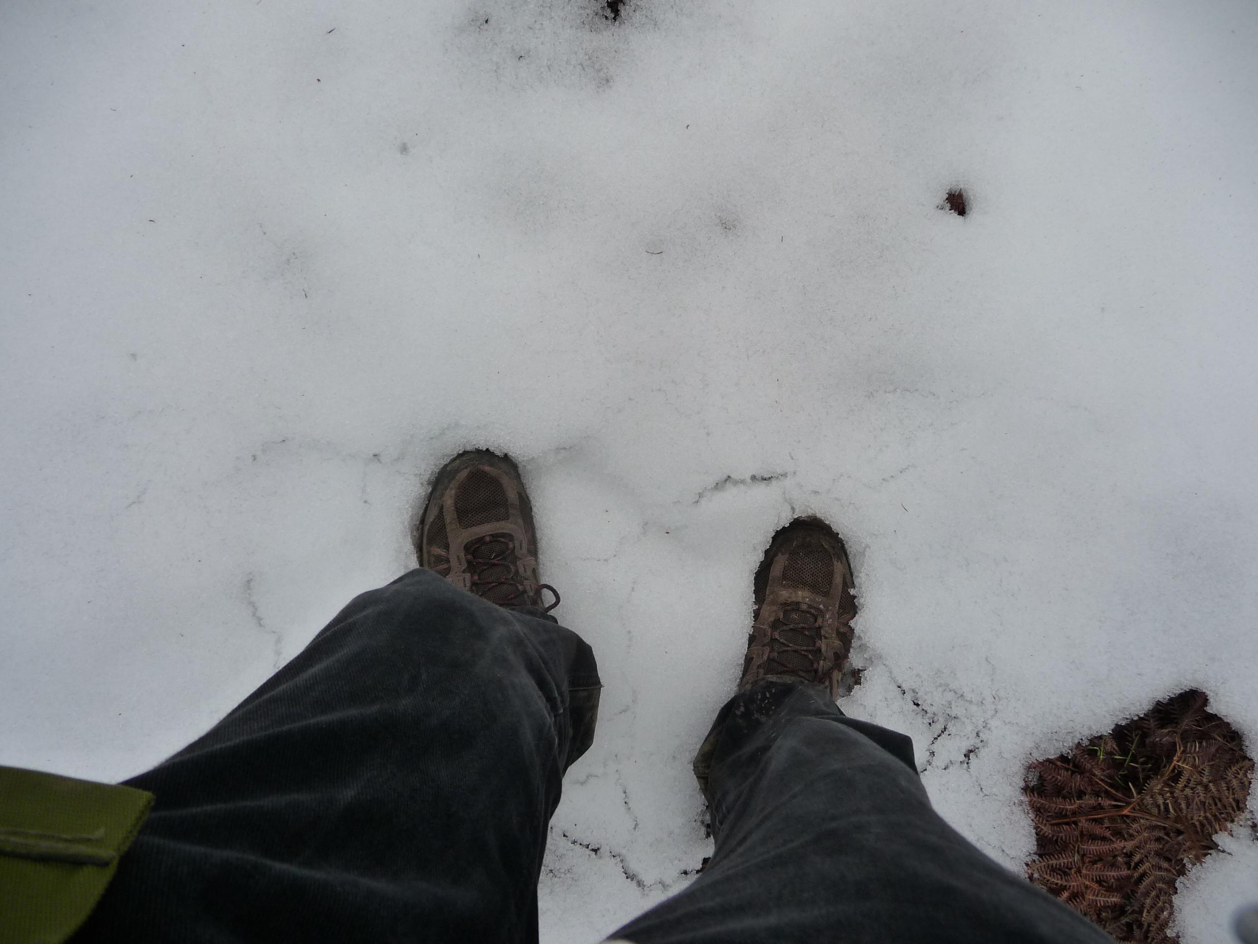 GR571-snow1