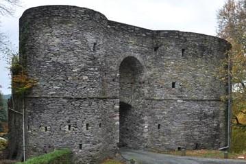Salmchateau château