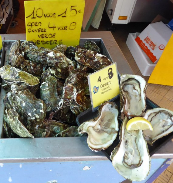 Oysters, Oostende