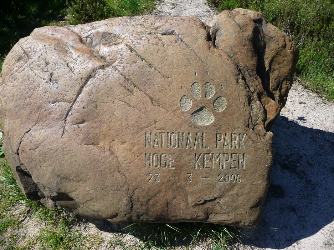 The Hoge Kempen is an excellent place to walk and cycle