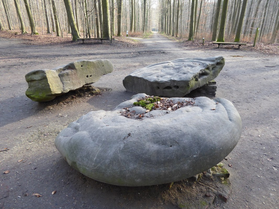 the famous stones of Tervuren Park