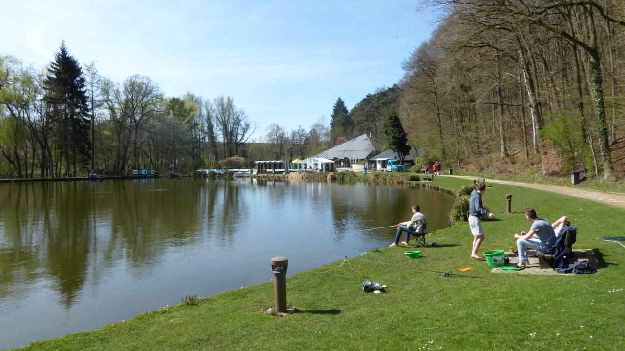 Bois de Reves domain (4)