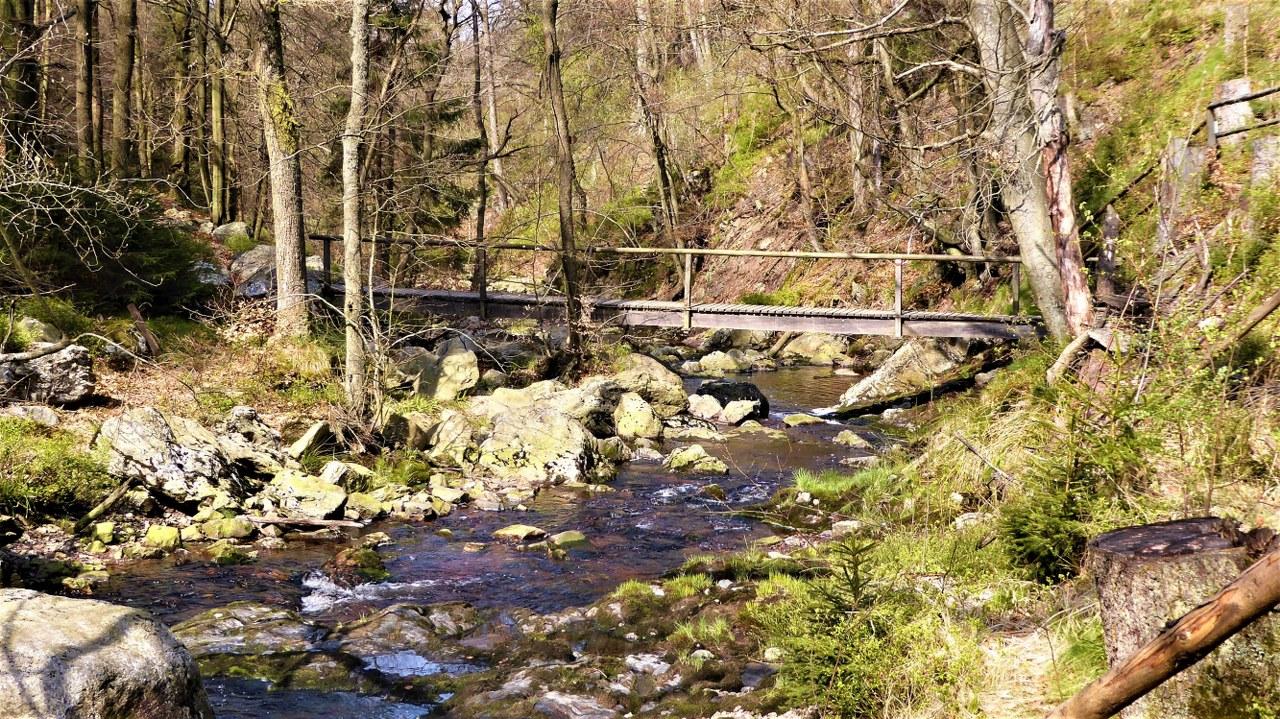Hoegne-valley (4)