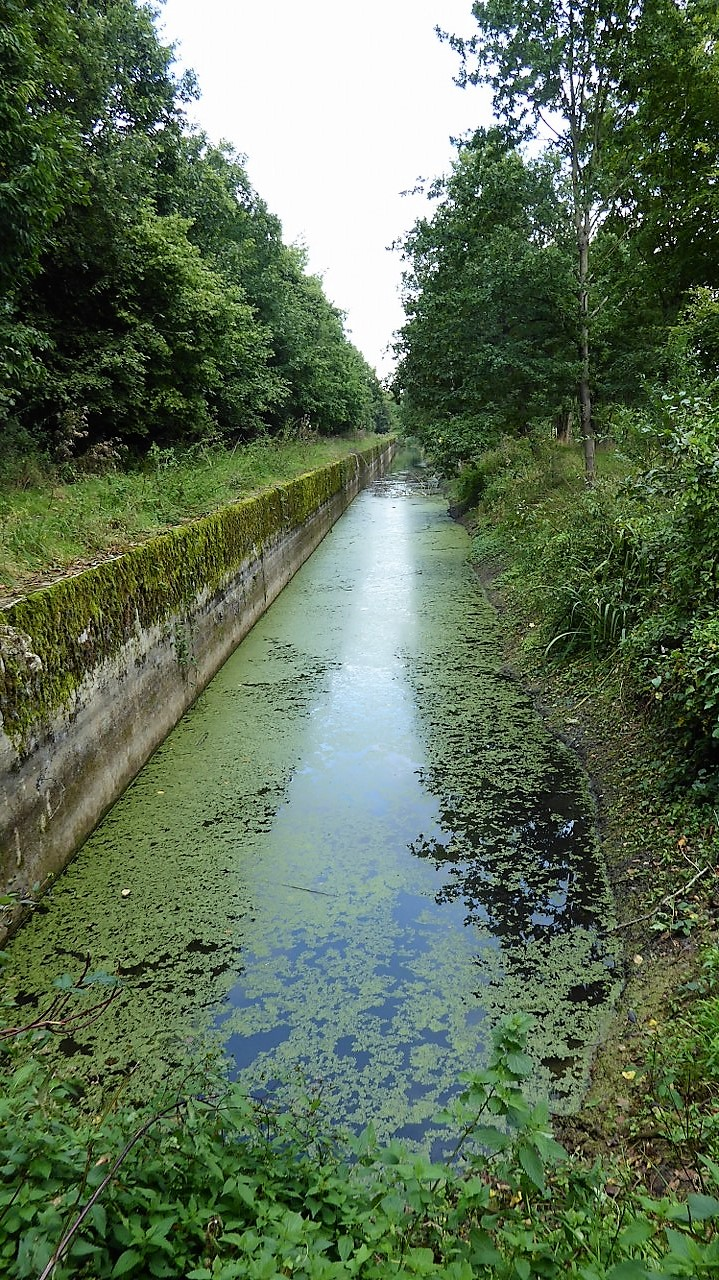 The anti-tank ditch in Haacht
