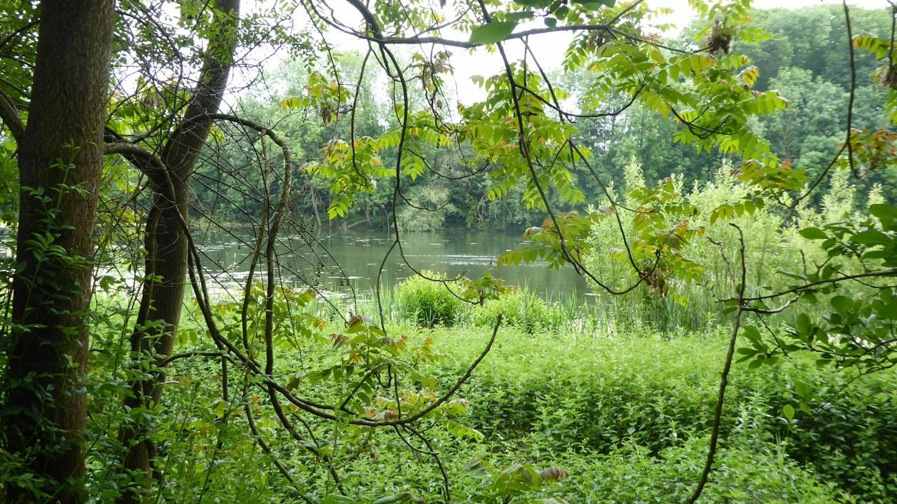 Leefdaal lake