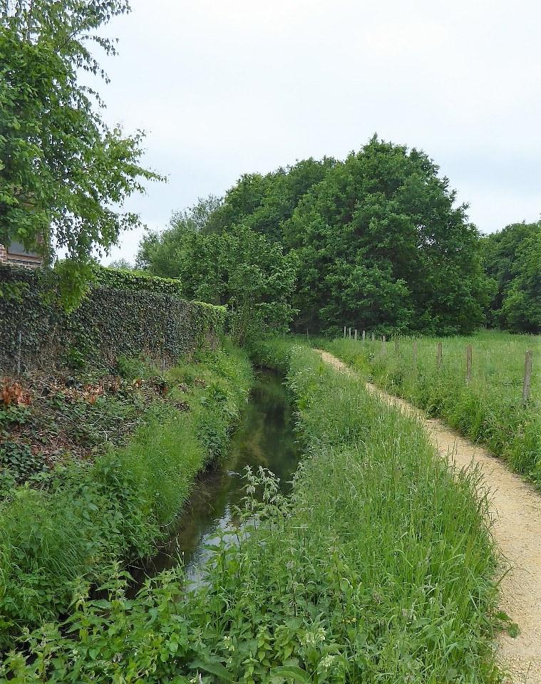 River Voer in Leefdaal