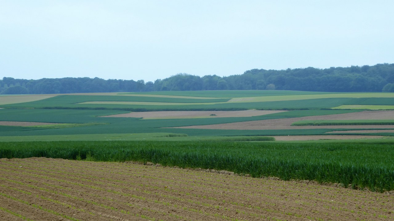 The farmland around Leefdaal