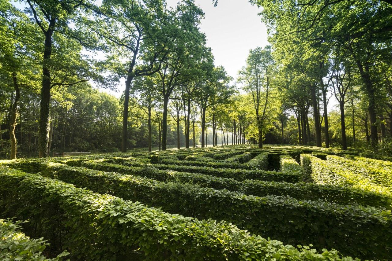 Loppem maze_1280x854
