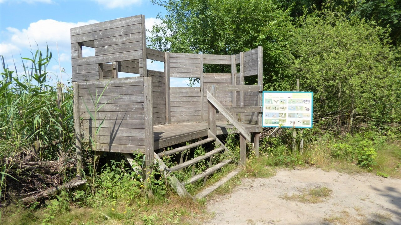 The bird observation hide at De Maten