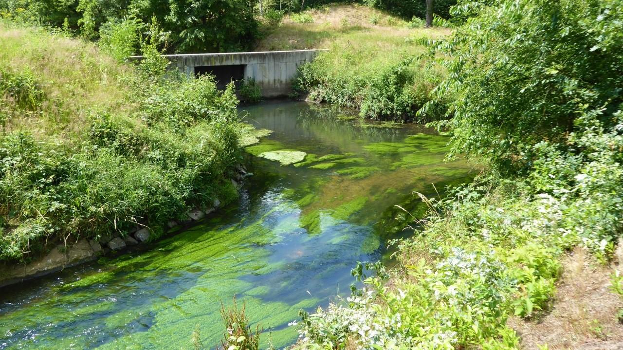 The river flowing through De Maten