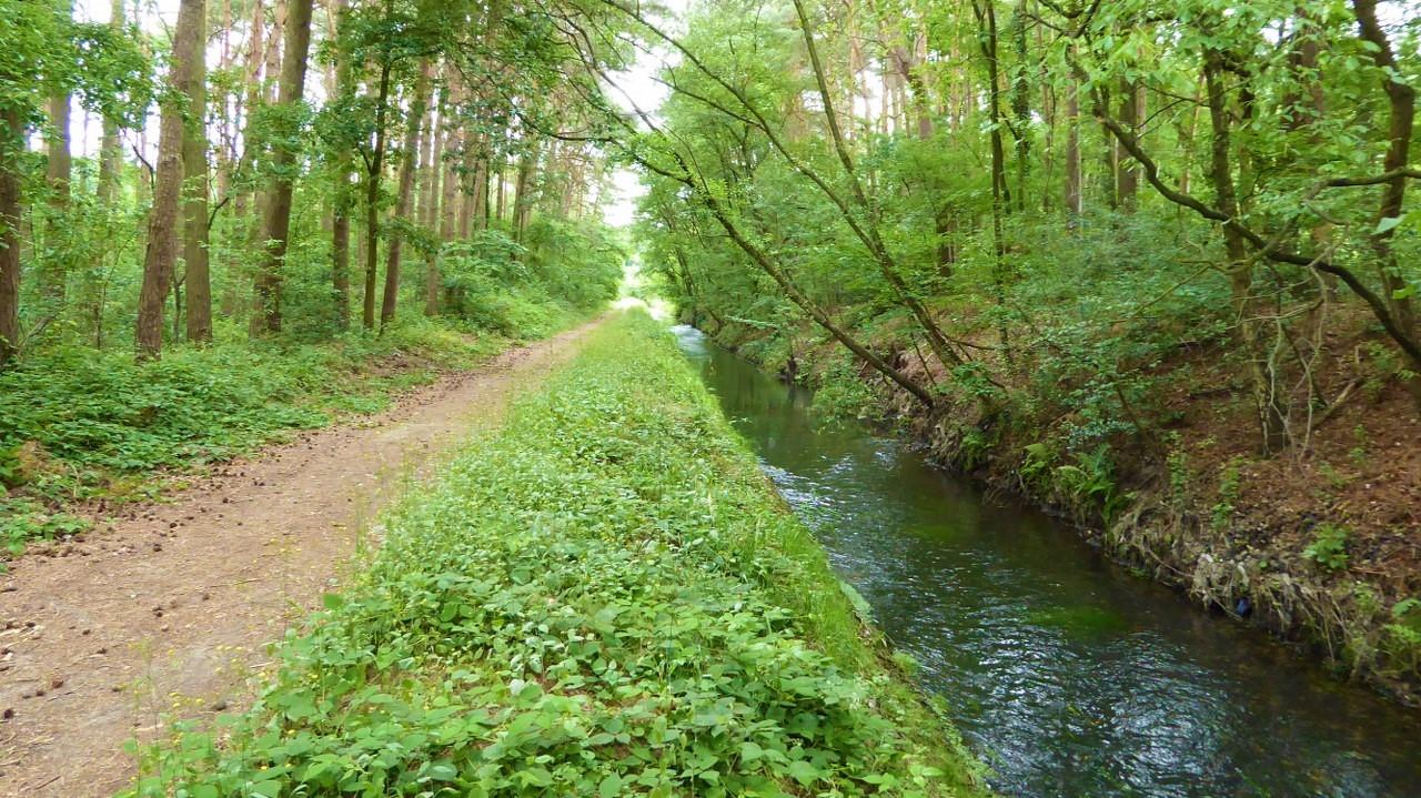 Walking around De Maten in Limburg