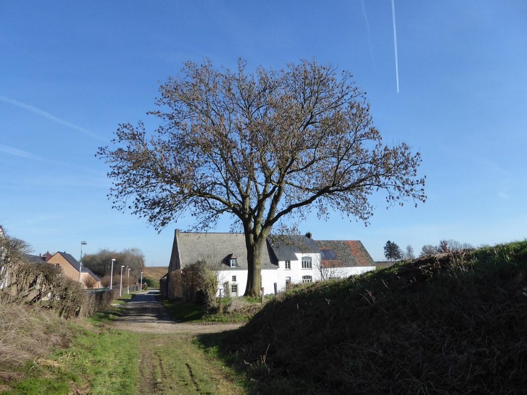 Petit Halet Belgium