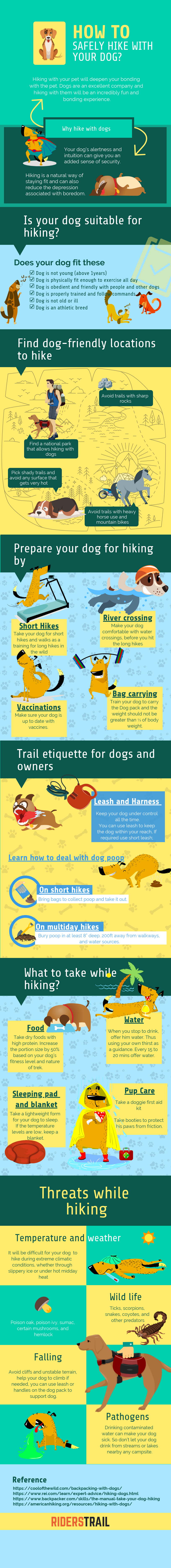 How to hike safely with your dog