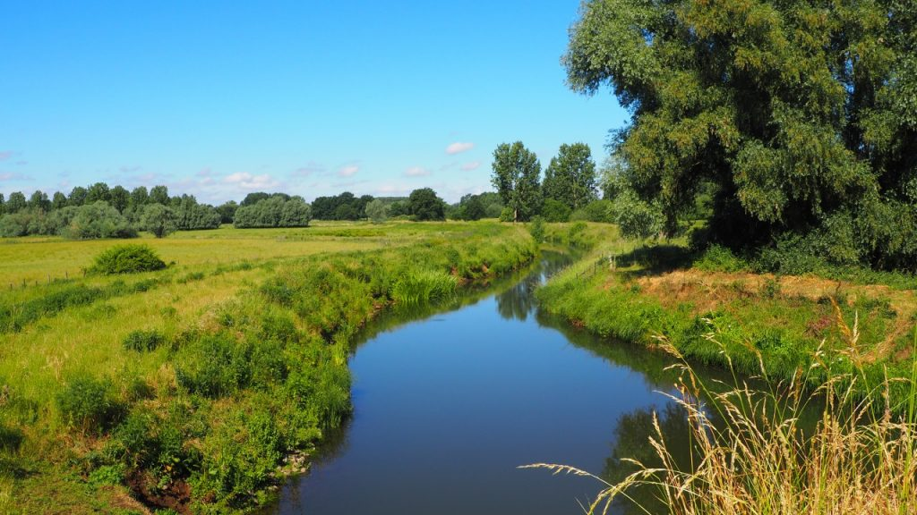 Walk through the Schulensbroek nature reserve