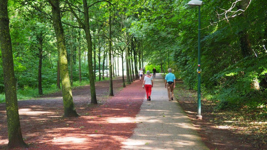 A walk around Grimbergen in the Prinsenbos