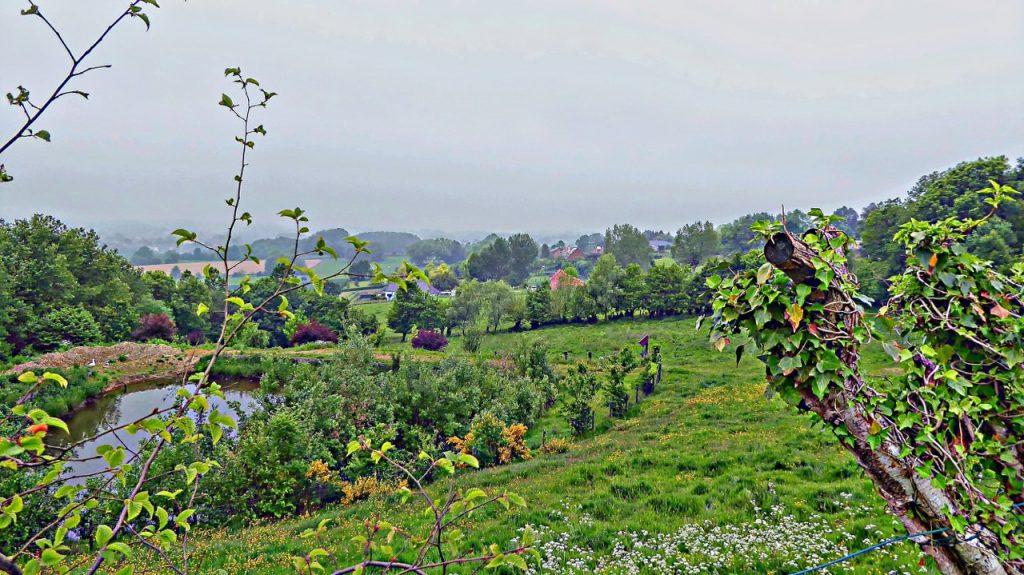 Three walks in Hainaut province