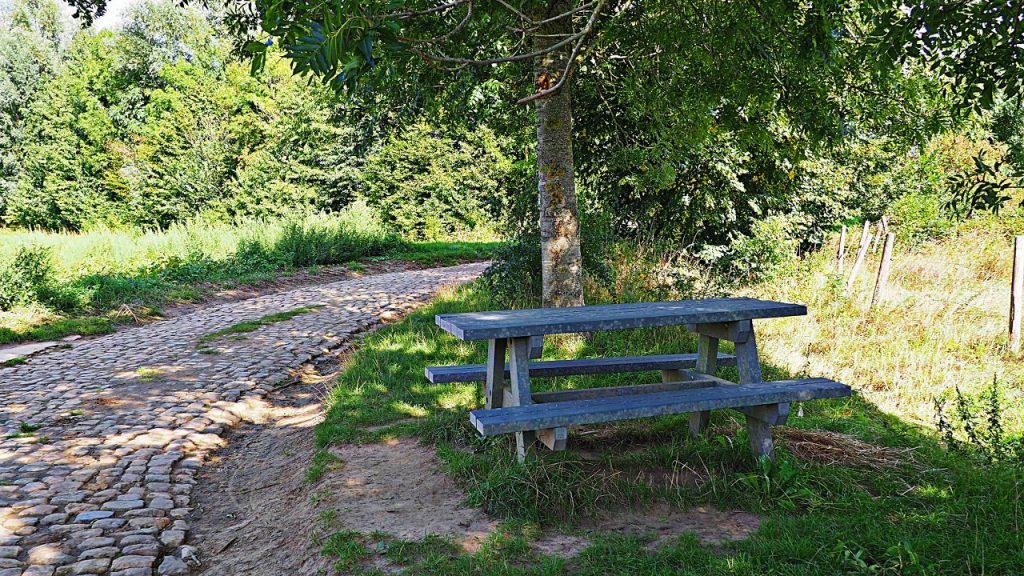 Enjoy a picnic in the Rosdel nature reserve