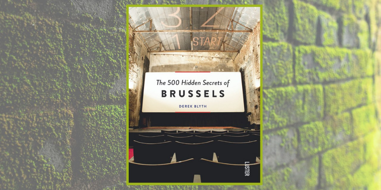 The hidden secrets of Brussels book