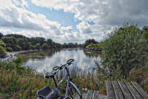 Cycling along the Schelde