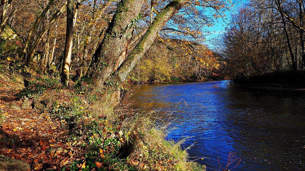 The River Lesse in Belgium