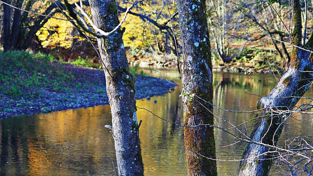 Walk along the River Lesse
