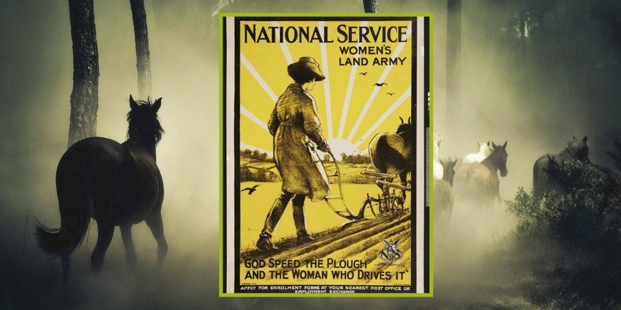 Women and horses in the First World War