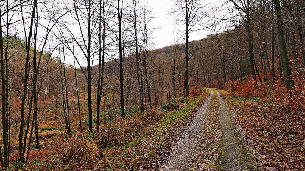 River Helle valley walk
