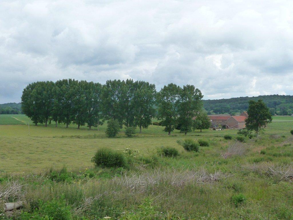 Bossut-Gottechain walk