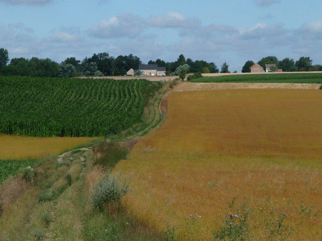 A walk in Lathuy Belgium