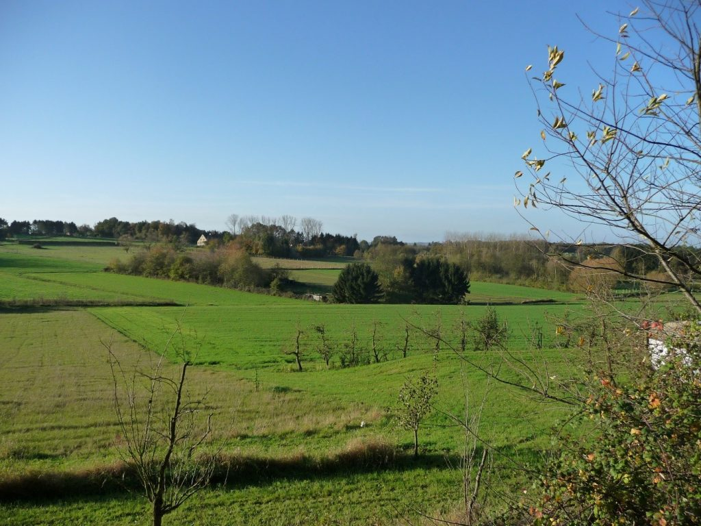 Nieuwrode country walk