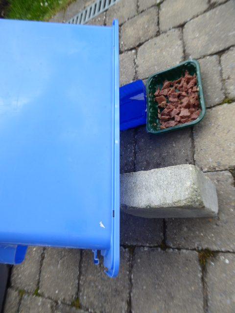 Make a hedgehog feeding station