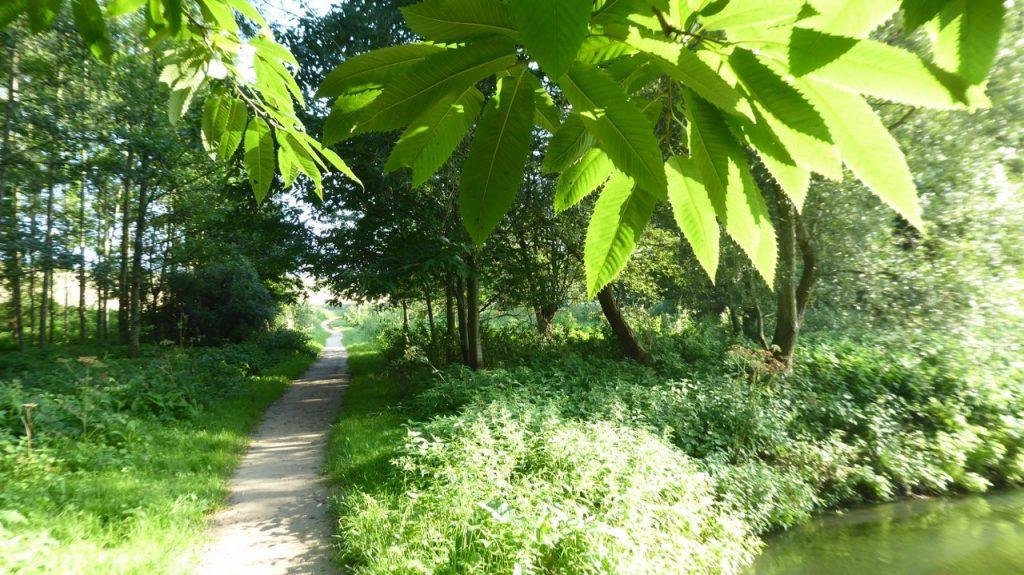 walk by River Voer
