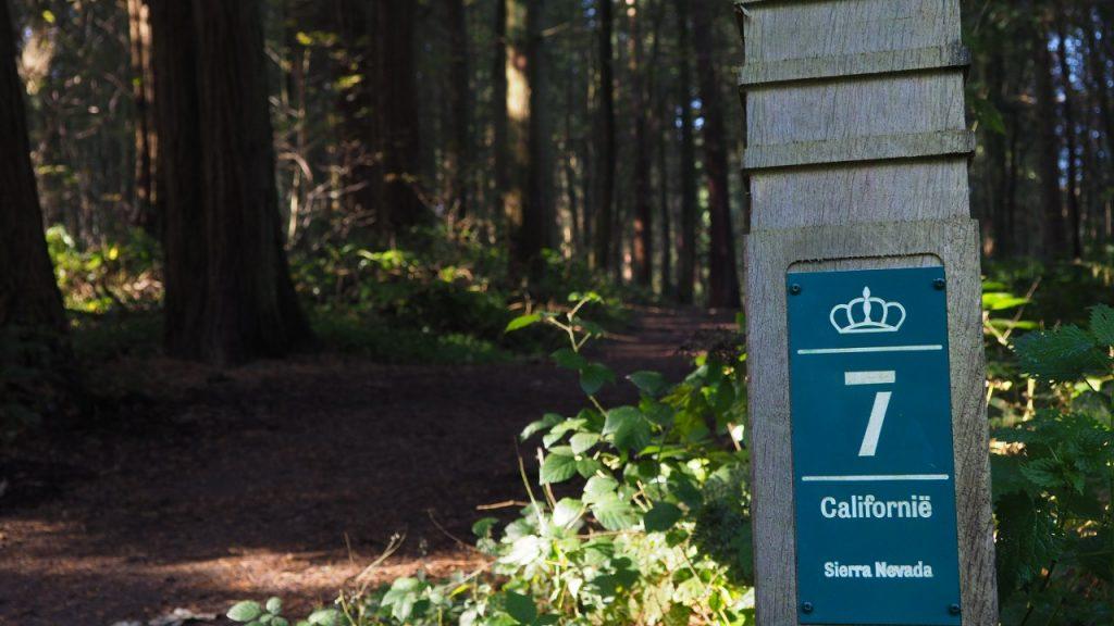 Tervuren Arboretum West USA walk
