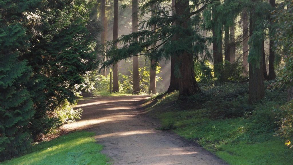 Tervuren Arboretum